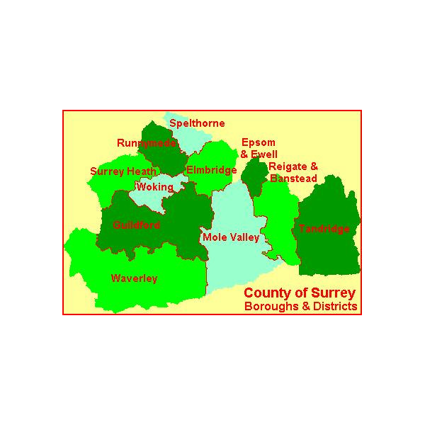 Surrey Boroughs and Districts